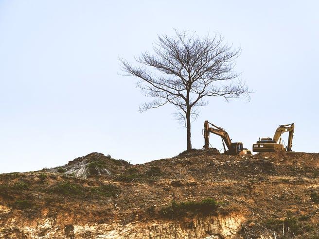 Zwei Bagger stehen auf einem leeren Grundstück