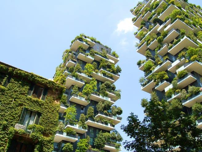 Grüne Mehrfamilienhäuser mit Bäumen und Pflanzen auf allen Balkonen