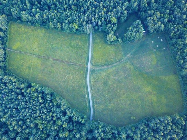 Große Freifläche für Grundstücke im Wald