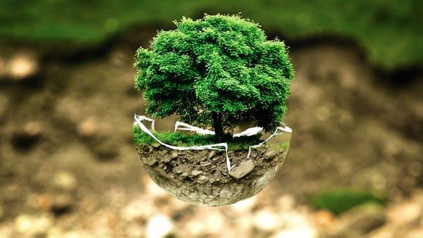 Baum aus Wassertropfen