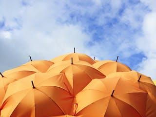 Viele orangenfarbene Sonnenschirme unter blauem Himmel