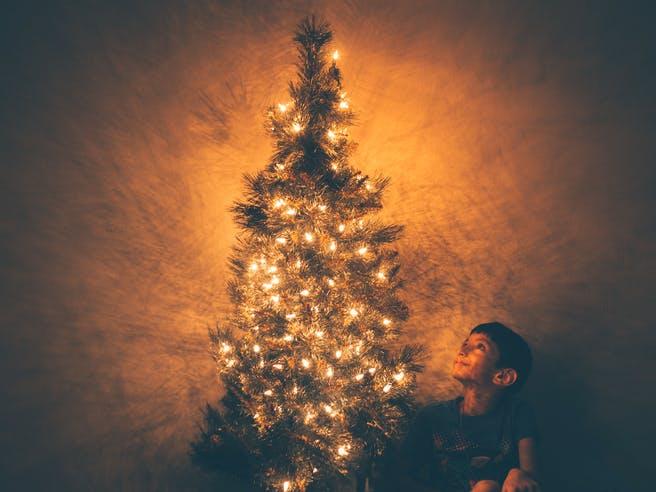 Junge sitzt unter einem Weihnachtsbaum mit Lichterkette