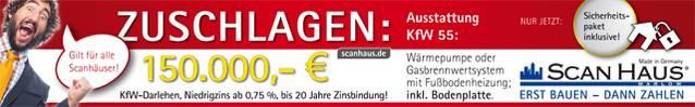 Scanhaus Banner 04