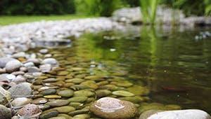 Mit Steinen ausgelegter Schwimmteich