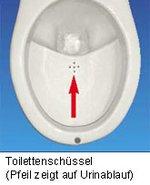 separationstoilette.jpg