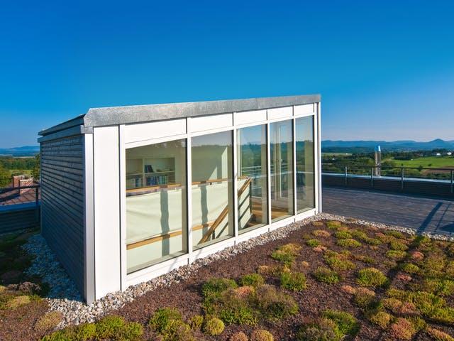 Begrünte Dachterrasse mit kleinem Glashaus